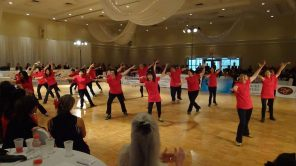 DanceSport 2011 - TO Team 29