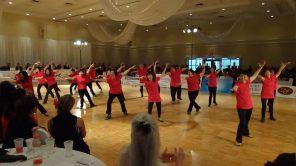 DanceSport 2011 - TO Team 29