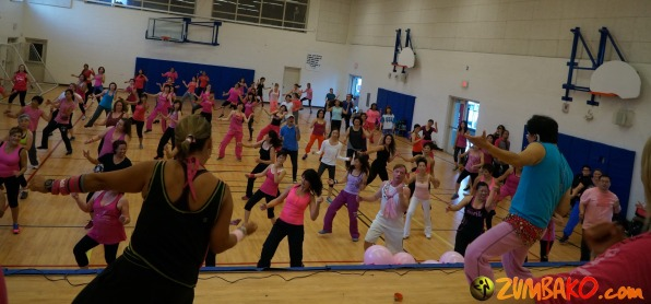Party in Pink 2014 Richmond Hill_022