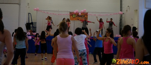Party in Pink 2014 Richmond Hill_036