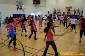 Party in Pink 2014 Richmond Hill_059