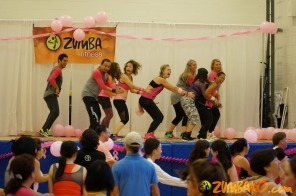 Party in Pink 2014 Richmond Hill_085