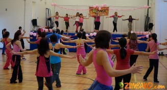 Party in Pink 2014 Richmond Hill_089