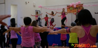 Party in Pink 2014 Richmond Hill_092
