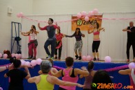 Party in Pink 2014 Richmond Hill_102