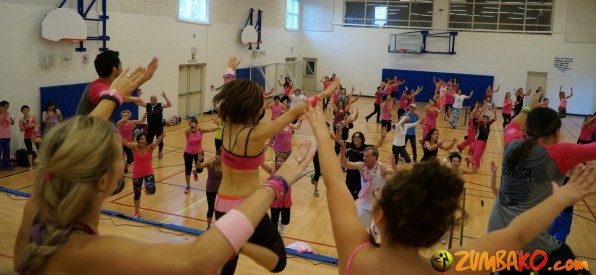 Party in Pink 2014 Richmond Hill_150