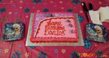 Danice Bday Party 2015_463