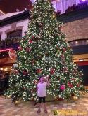ZumbaKo 2015 Dec Cruise_06