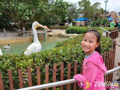 ZumbaKo Disney 2019 Dec_261